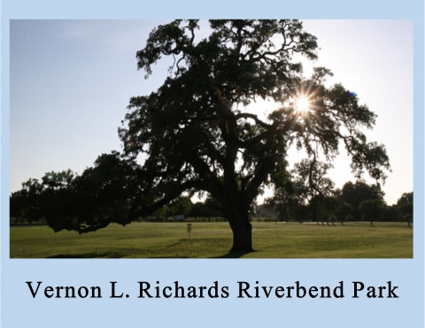 Web banner for Riverbend Park with giant oak tree in field