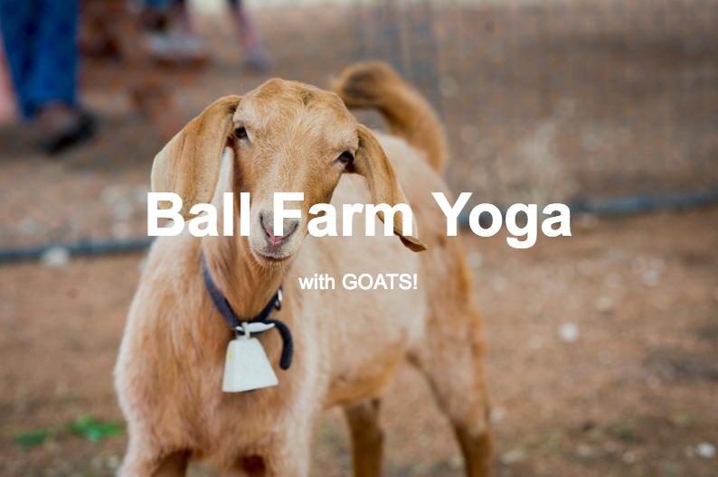 Goat yoga event listing