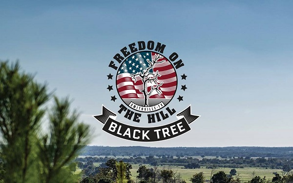 Freedom on the Hill event