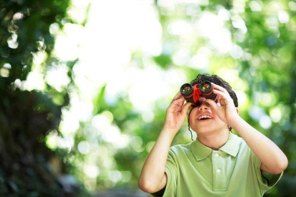 Young boy birdwatching with binoculars.