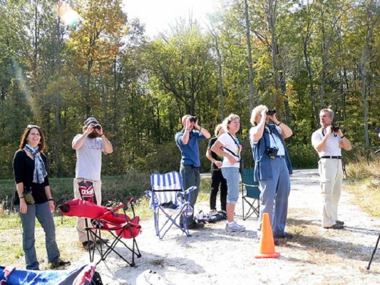 Birdwatching in the woods in a Big Sit event