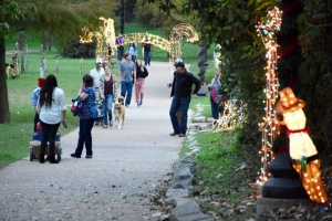 People enjoying walking the River of Lights, a holiday display along the Colorado River in Bastrop, TX
