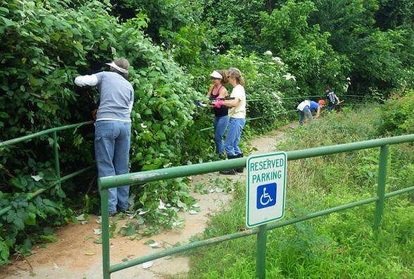 People clearing overgrowth at the Colorado River Refuge trails in Bastrop County in Texas.