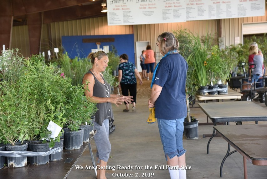 Two people talking about how to grow plants.