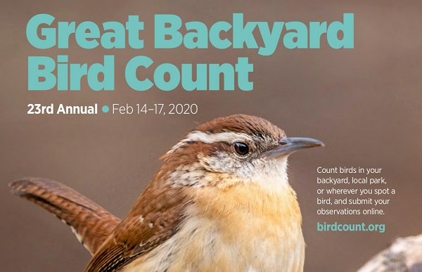 Part of poster of Great Backyard Bird Count 2020 with bird